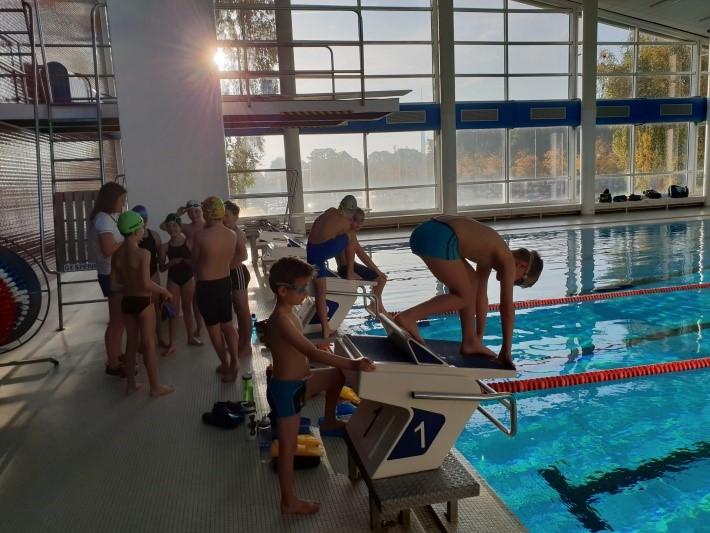 SVE-Nachwuchsschwimmer beim Mehrkampf erfolgreich