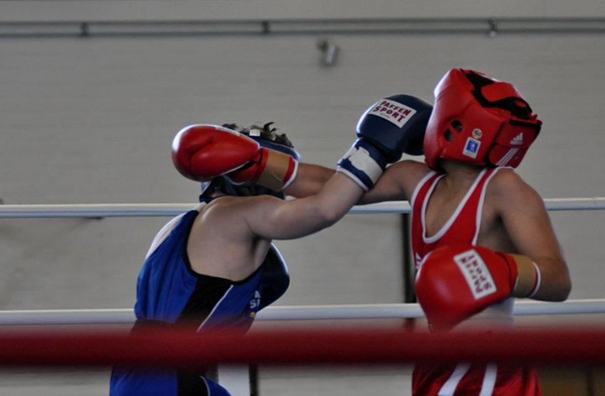 Claudio Hoxhaj holt ersten Box-Meistertitel nach Eidelstedt