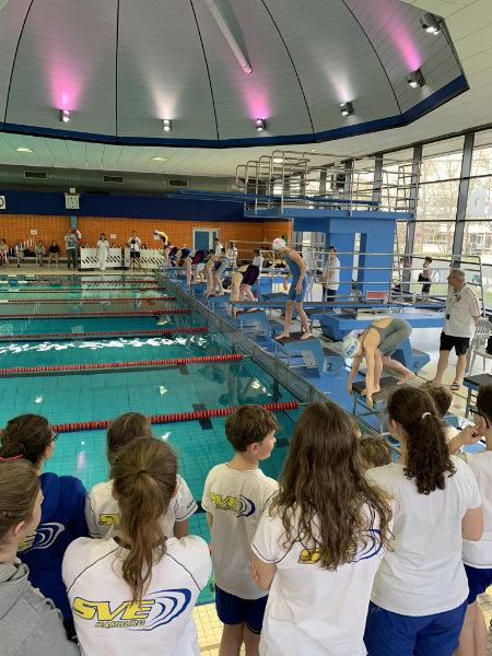 SVE-Schwimmteam stellt erneut neue Vereinsrekorde auf