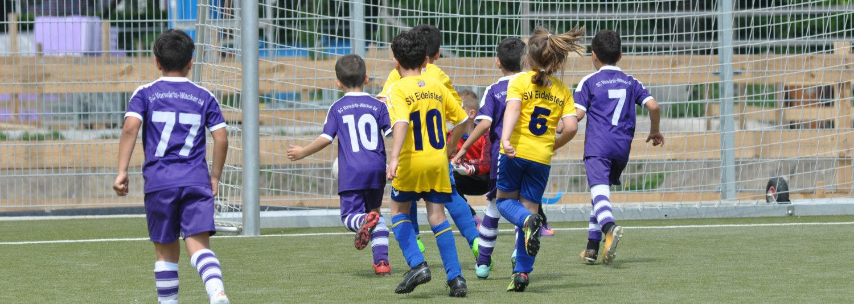 News zur Fußball-Akademie